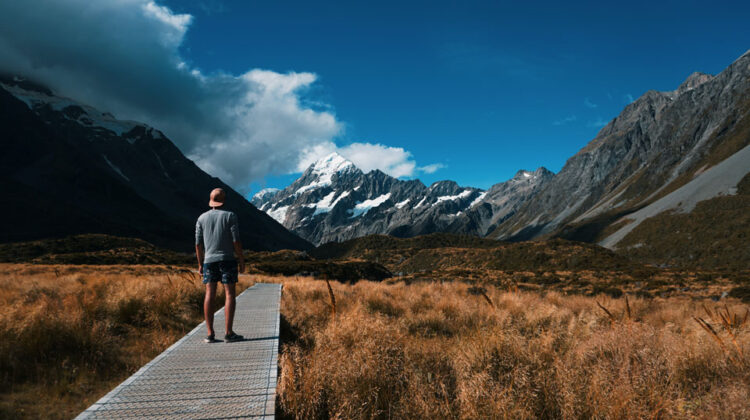 Why is New Zealand a good place to live and work?